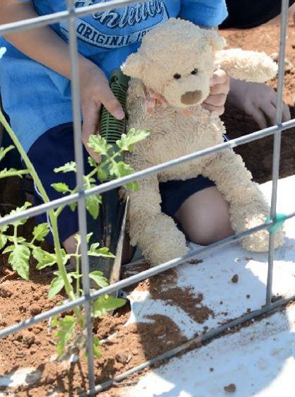 Manny Gardening